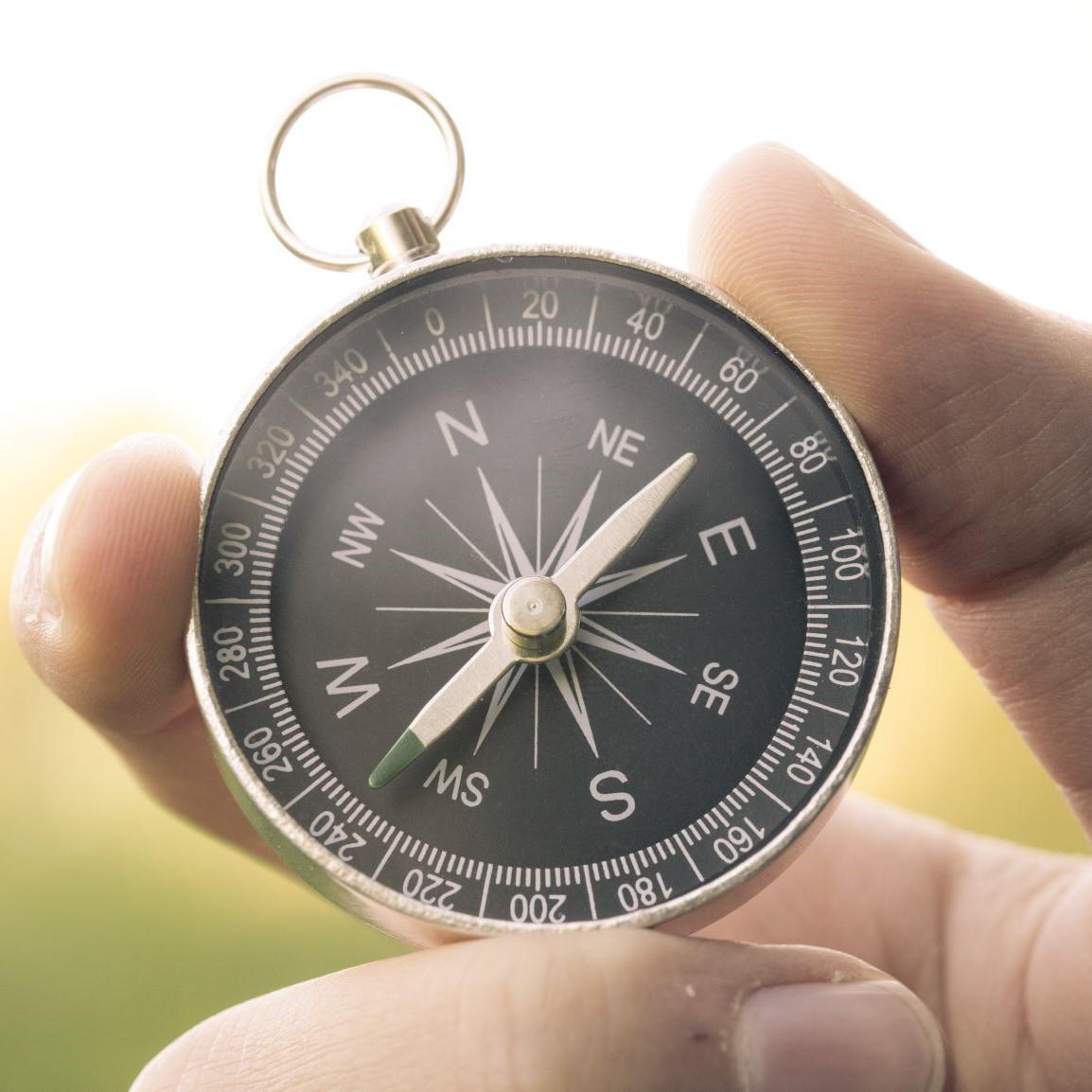 Navigate the talent landscape