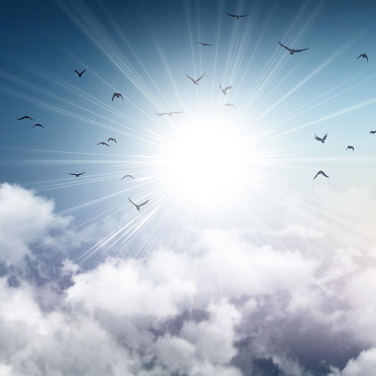 Dynamics 365 Cloud Migration