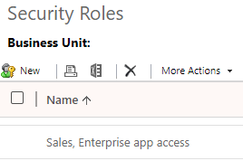 assigning a security role for a custom app