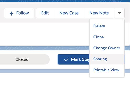 Salesforce Spring '21 manual sharing